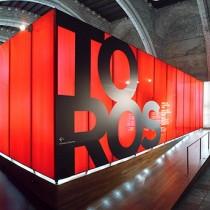 红与黑 展厅实验作品